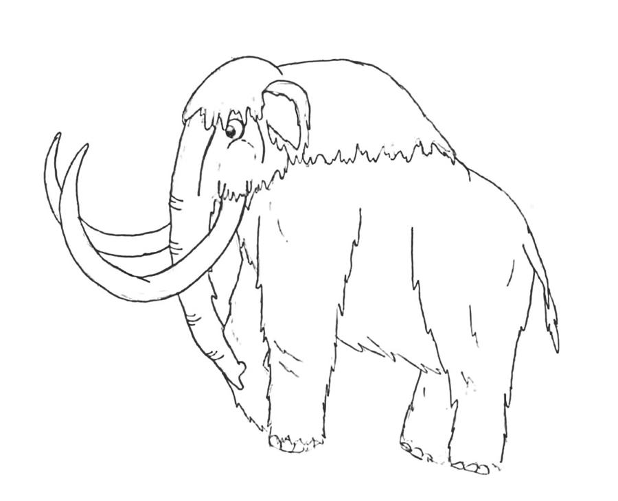 900x730 Woolly Mammoth By Pelycosaur24