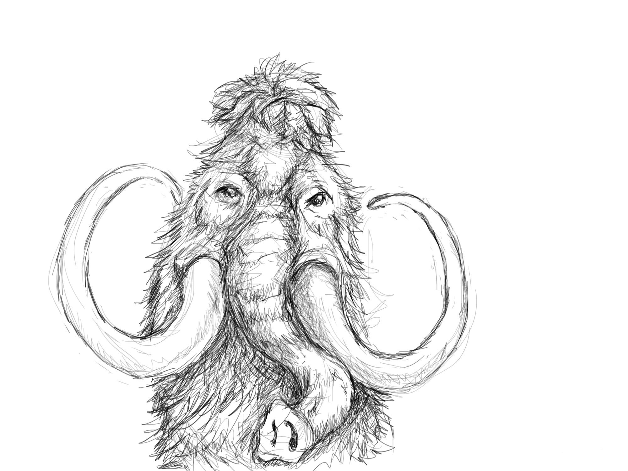 2000x1500 Wooly Mammoth 10,000 Bad Drawings