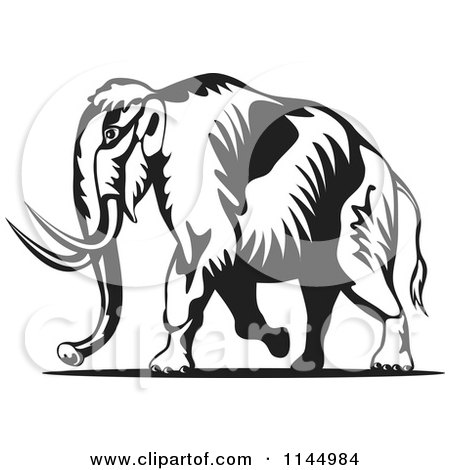 450x470 Clipart Of A Retro Black And White Walking Wooly Mammoth