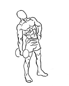 221x275 Dumbbell Lateral Flexion Extension Pop Workouts