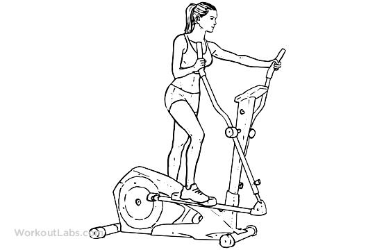 540x360 Cardio Elliptical Machine Workoutlabs