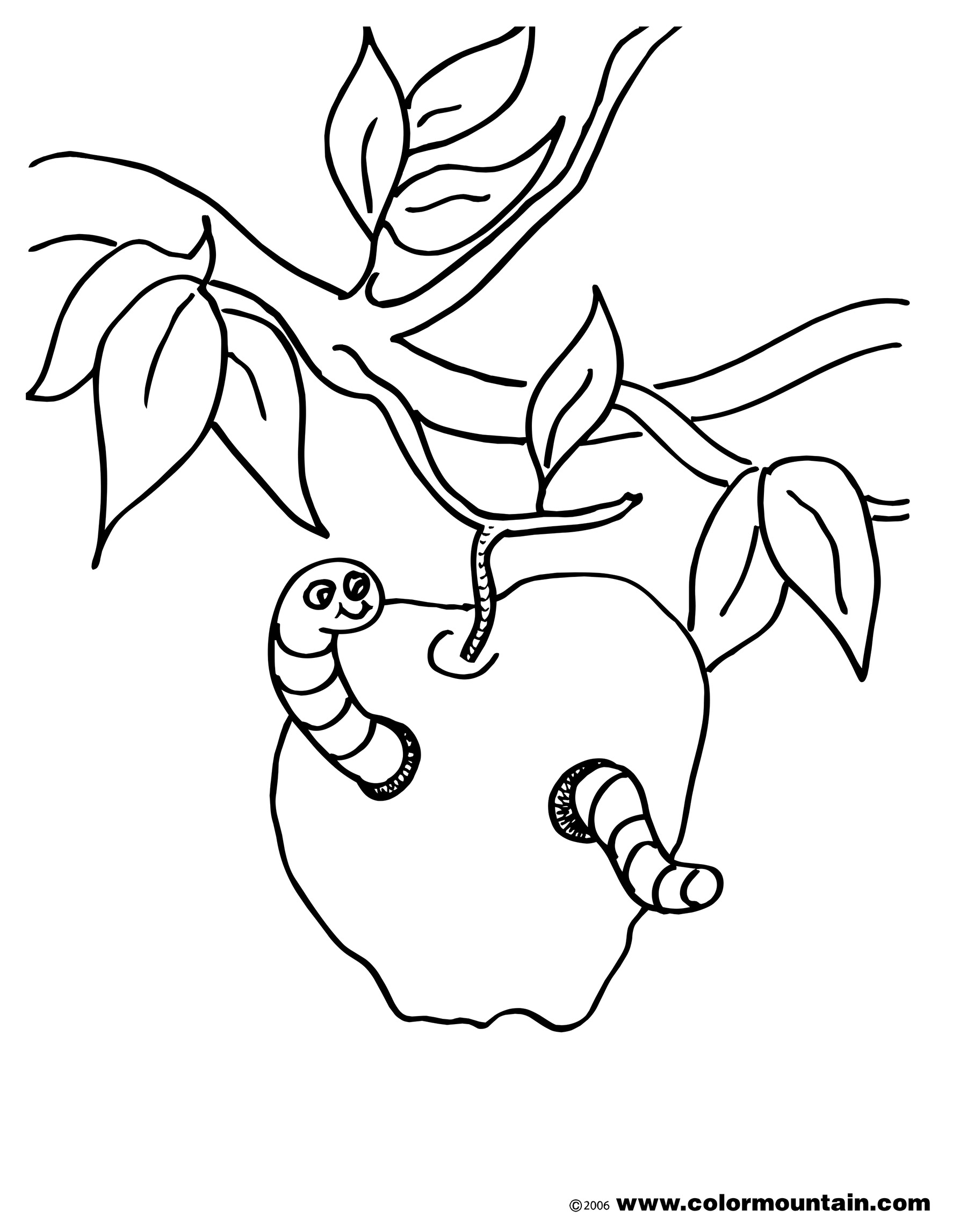 1800x2294 Worm Coloring Page Food Scraps Apple