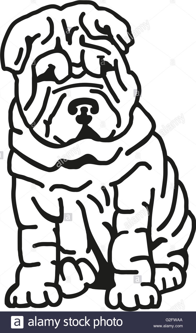 819x1390 Shar Pei With Lots Of Wrinkles Stock Photo, Royalty Free Image