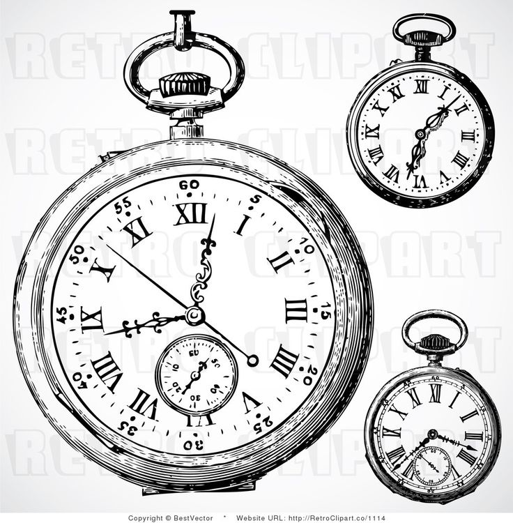 736x750 Vintage 70s Drawings Vintage Pocket Watch Clip Art Vintage