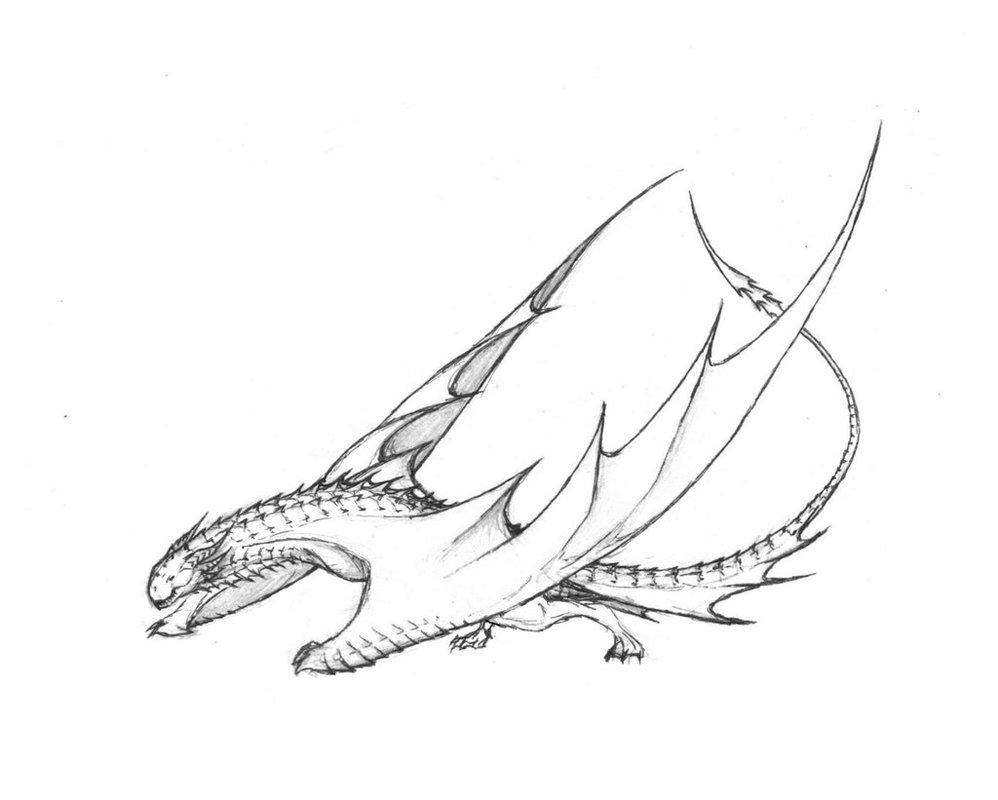 Wyvern Drawing