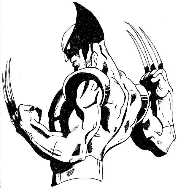 600x636 X Men Wolverine By Katie287