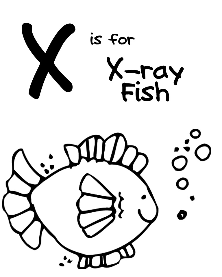 Letter X Ray Fish