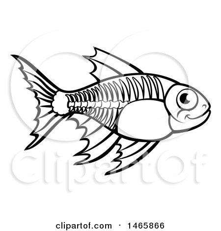 450x470 Royalty Free (Rf) Xray Fish Clipart, Illustrations, Vector Graphics