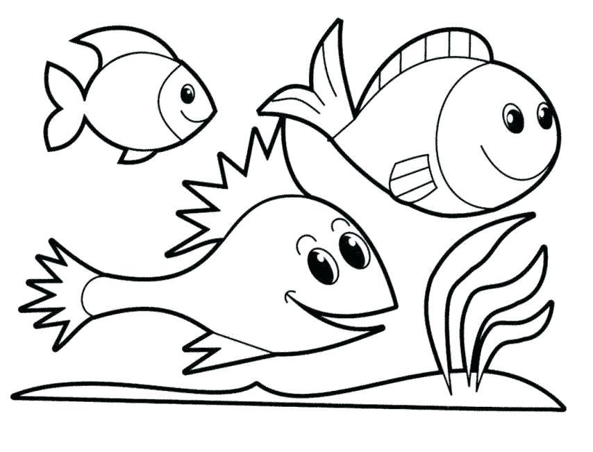 854x651 X Ray Fish Coloring Page X Ray Tetra X Ray Fish Coloring Page