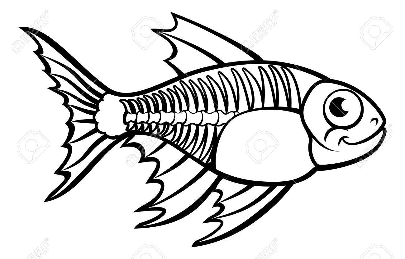 1300x834 X Ray Tetra Fish ( Pristella Maxillaris) In Cartoon Character