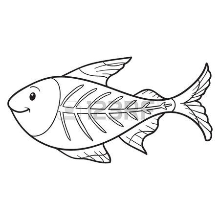 450x450 Coloring Book (X Ray Fish) Royalty Free Cliparts, Vectors,