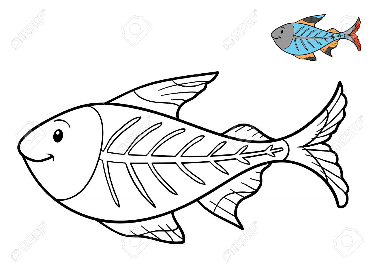 1300x918 Coloring Book For Children, X Ray Fish Stock Photo, Picture