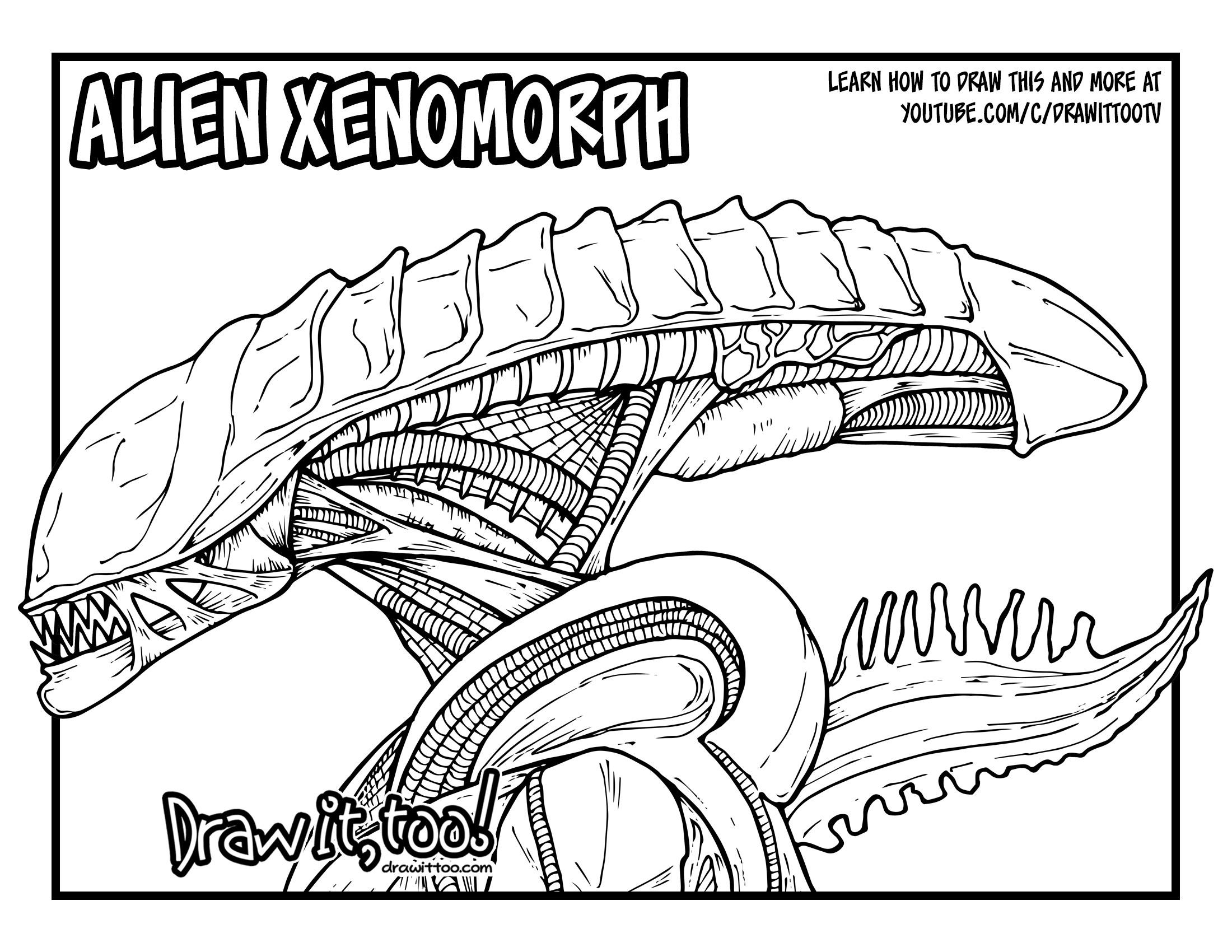 2200x1700 Alien Xenomorph (Alien Movie Franchise) Drawing Tutorial