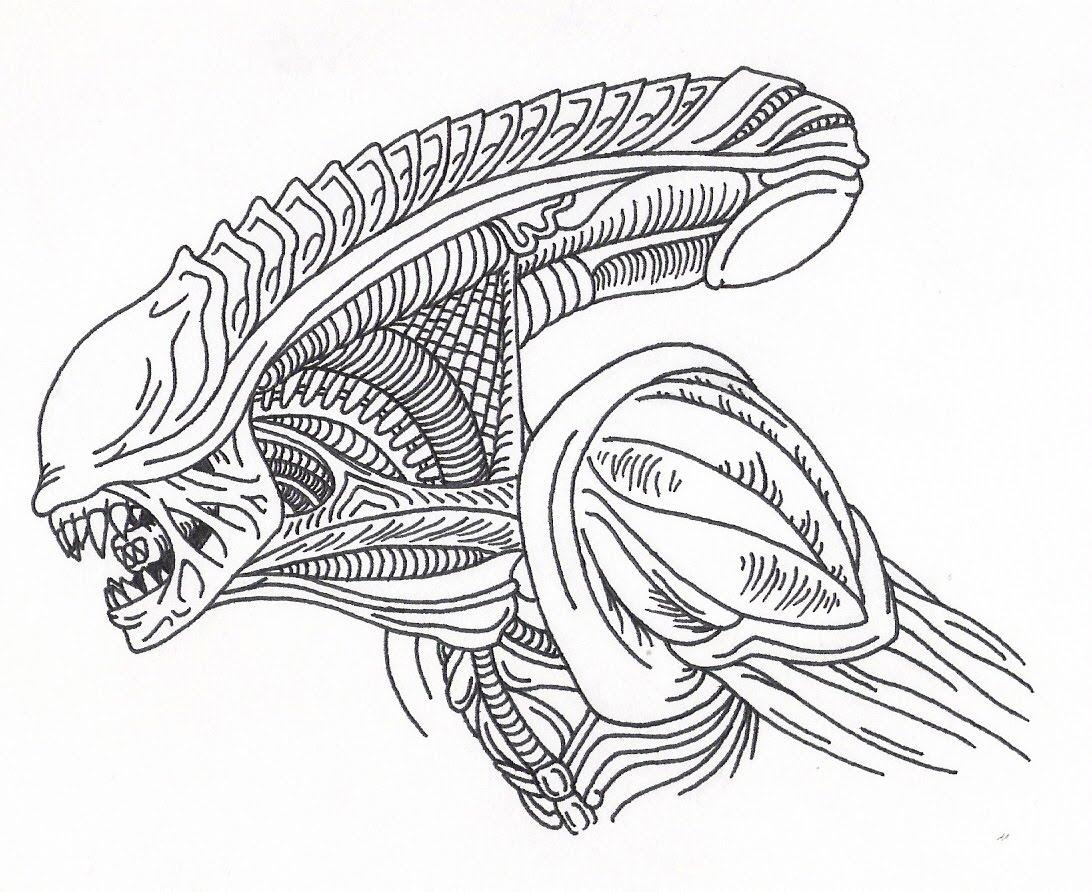 1092x892 Cool Alien Drawings Drawn Alien Alien Xenomorph