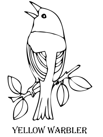 360x480 Yellow Warbler Bird Coloring Page Free Printable Coloring Pages