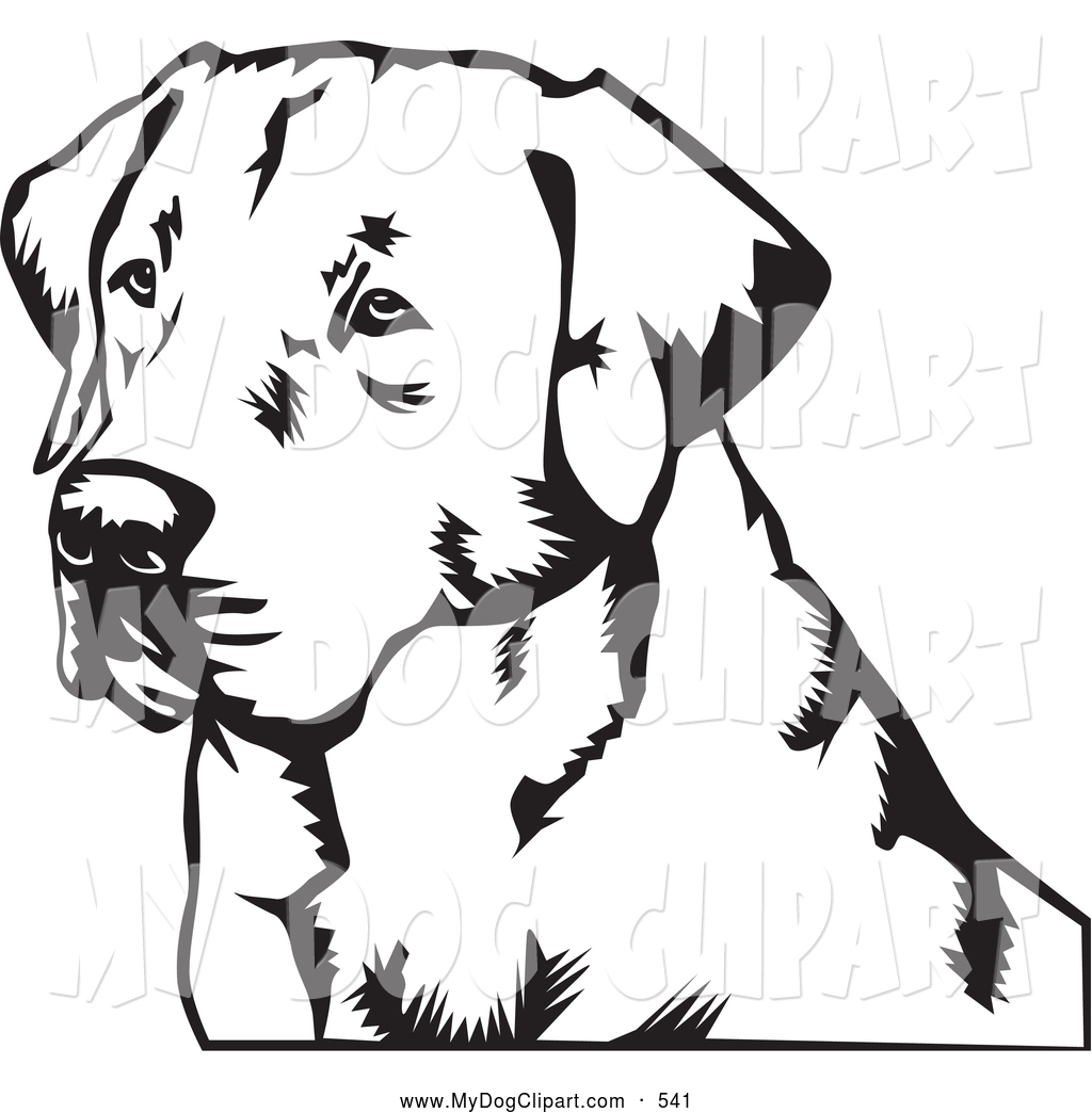 Yellow Lab Drawing at GetDrawings.com   Free for personal use Yellow ...