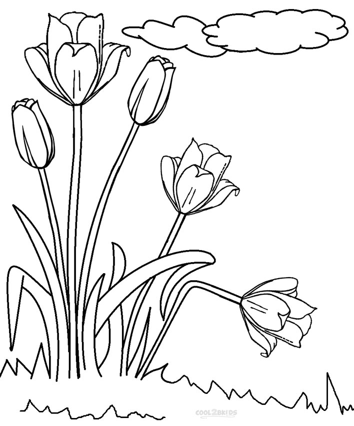 708x850 Printable Tulip Coloring Pages For Kids Cool2bkids