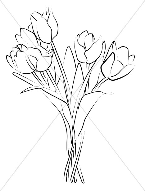 467x612 Tulip Bouquet Sketch Church Bouquet Clipart