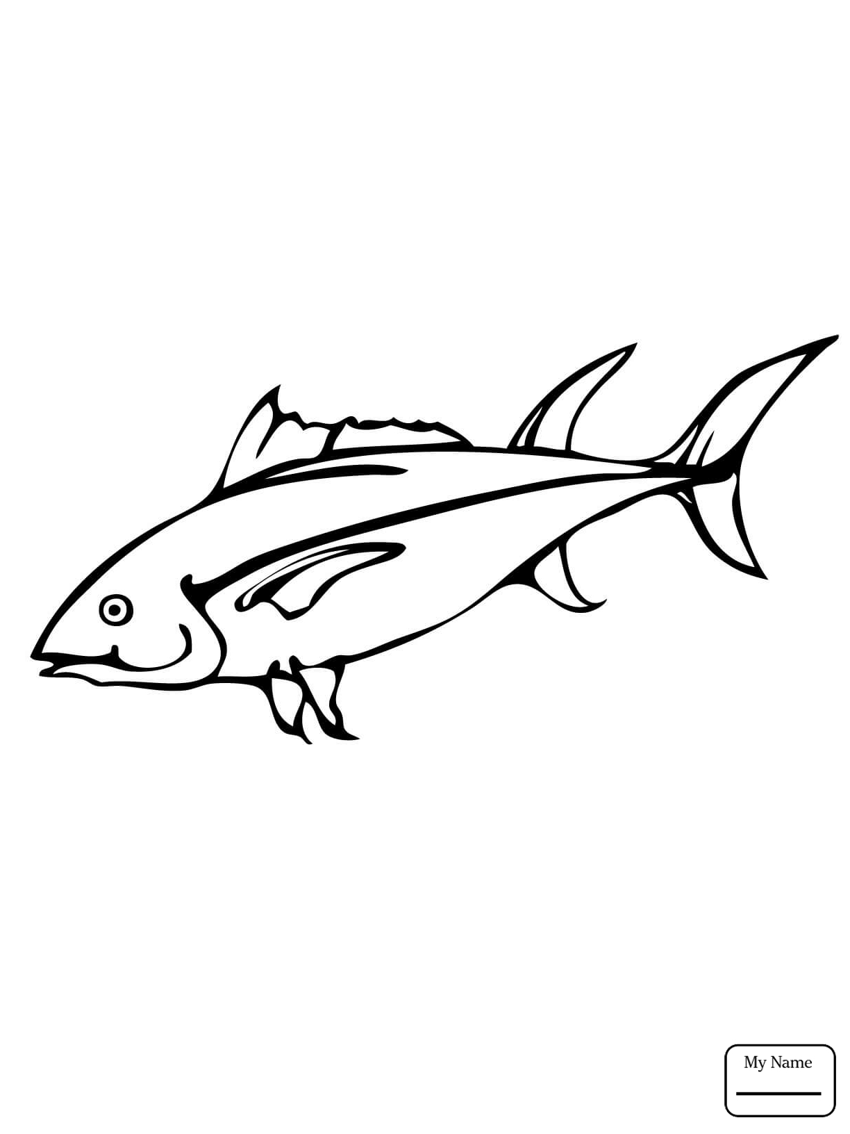 Yellowfin Tuna Drawing at GetDrawings Free for