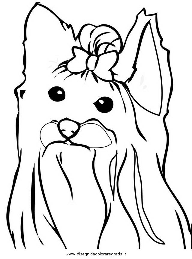 640x860 Yorkshire Terrier Coloring Pages