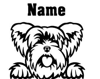 340x270 Yorkshire Terrier Etsy