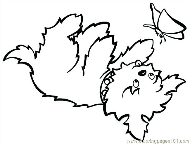 650x494 Teacup Yorkie Coloring Pages Coloring Page For Kids