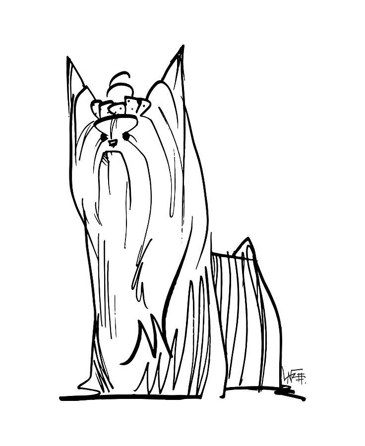 736x900 Yorkie Gesture Sketch Drawing By John Lafree