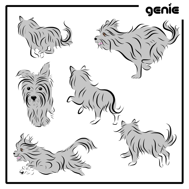 1500x1500 Yorkshire Terrier Yorkie Dog Vector Graphic Illustration Hand