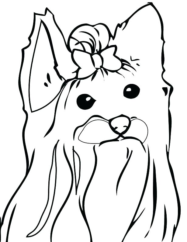615x796 Yorkie Coloring Pages Cortefocal.site