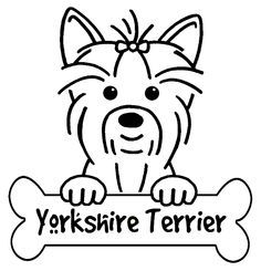 236x245 Yorkshire Terrier Line Drawing