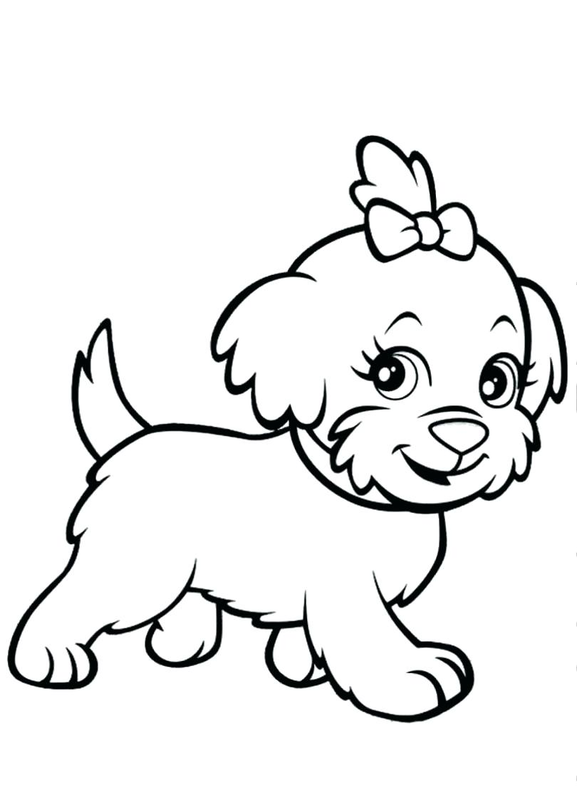 810x1116 Coloring Pages Of A Yorkie