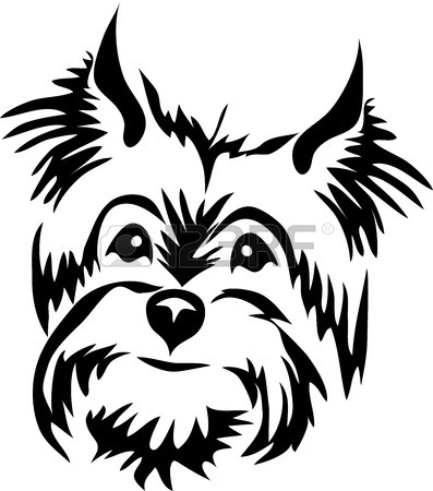 397x450 1,071 Yorkshire Terrier Stock Vector Illustration And Royalty Free
