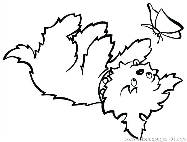 650x494 Yorkie Coloring Page Terrier Coloring Pages Illustration