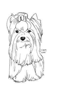 Yorkie Drawing At Getdrawingscom Free For Personal Use Yorkie