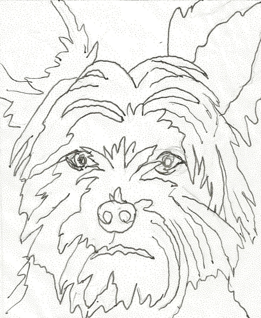 1023x1242 Yorkie Coloring Pages Coloring Page Lets Play Teacup Yorkie