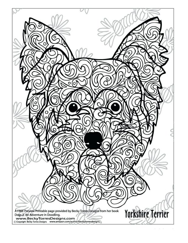 Line Drawing Of Yorkshire Terrier : Yorkie poo coloring pages bltidm