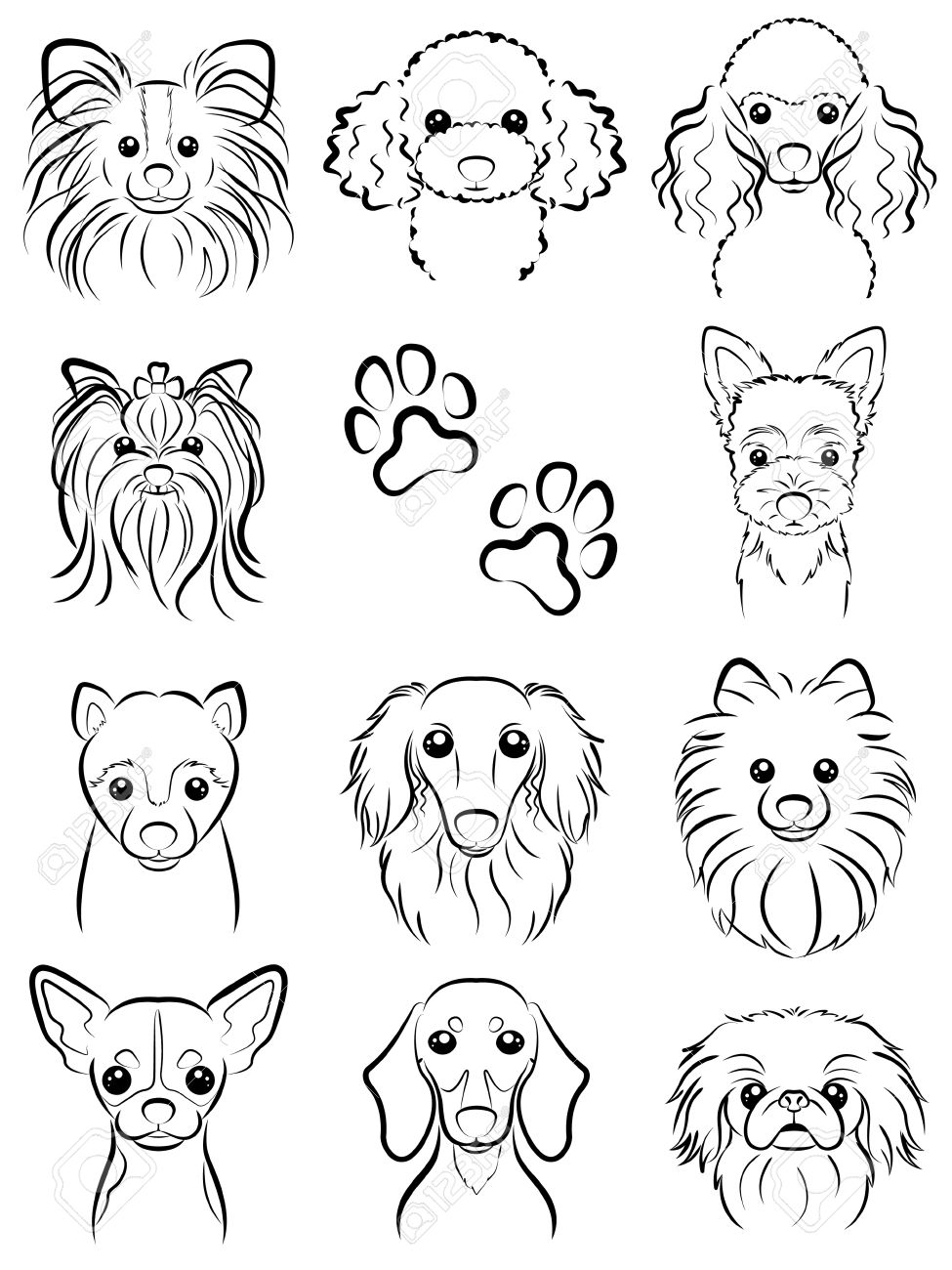 975x1300 Dog Line Drawing Royalty Free Cliparts, Vectors, And Stock