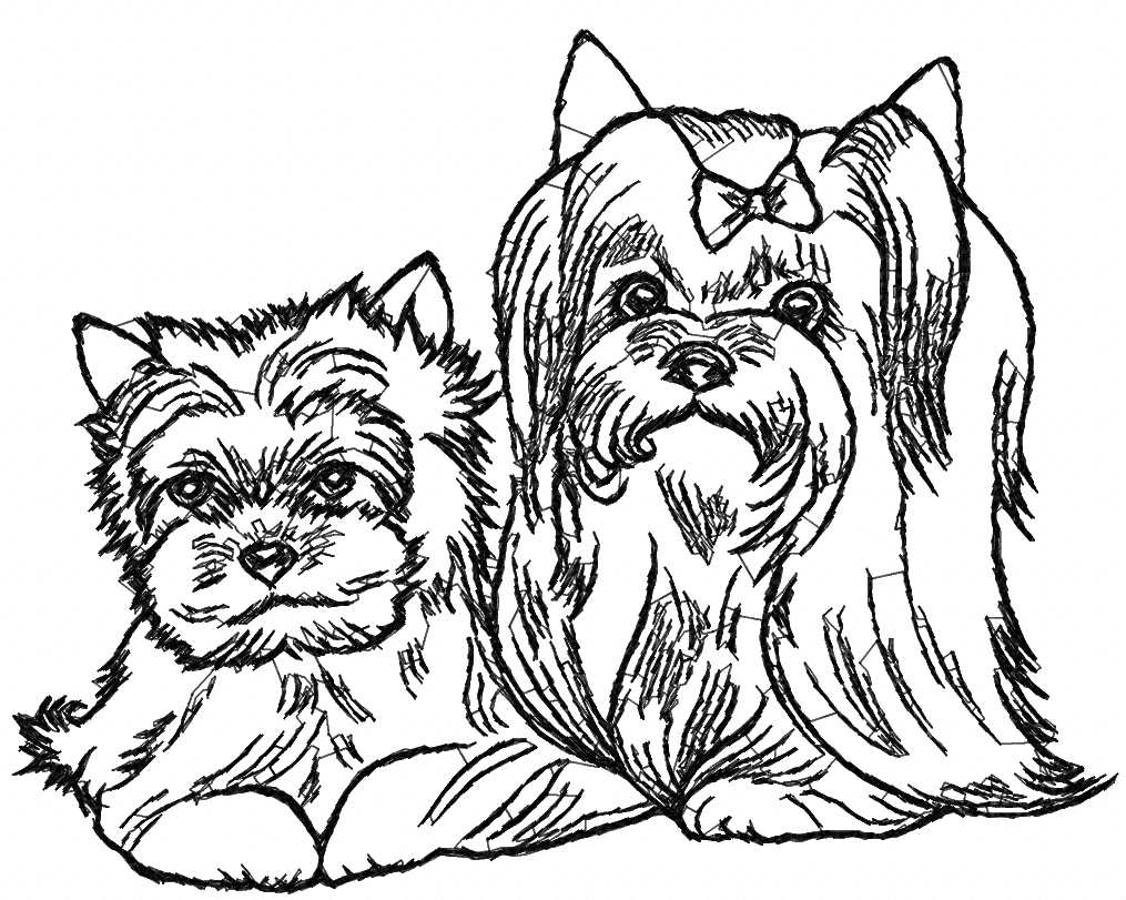 1015x811 Yorkshire Terrier Embroidery Designs