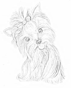 236x291 Yorkshire Terrier With Bow Plants And Animals Download Royalty