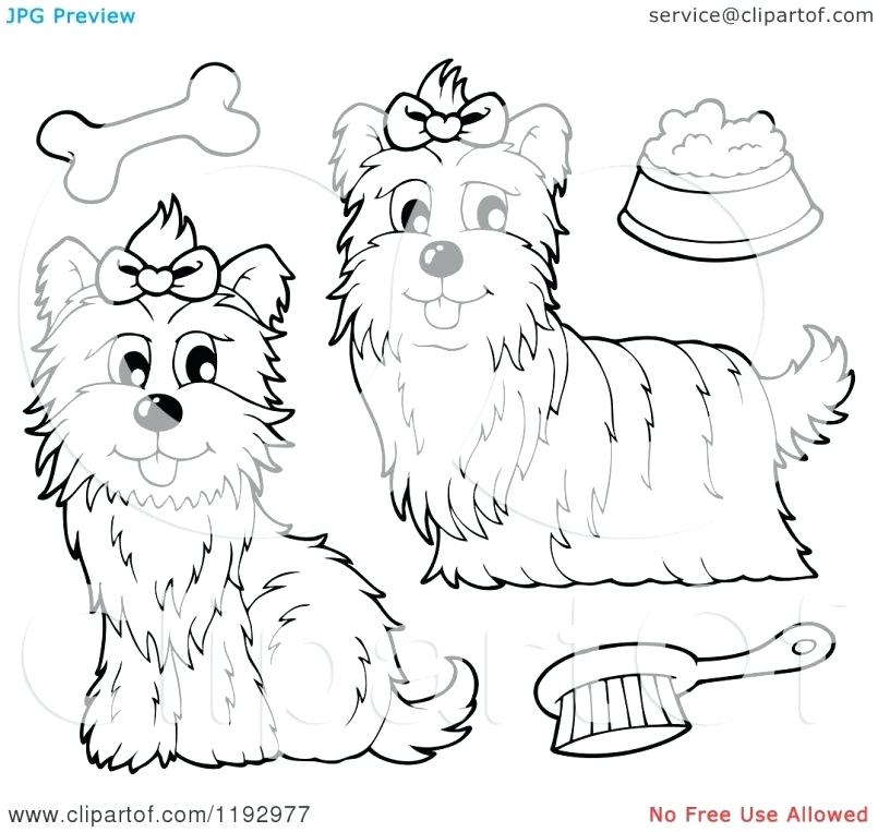 805x763 Yorkshire Terrier Coloring Pages Brexitbook.club