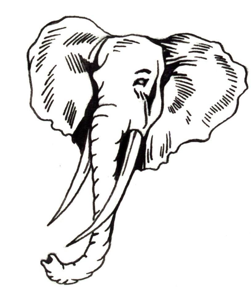 814x981 Elephant Face Drawing How To Draw Elephant Head Tribal Tattoo