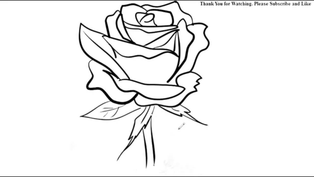1024x576 Easy Rose Drawings How To Draw A Rose Flower Easy Line Drawing