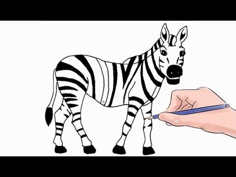 480x360 How To Draw A Zebra Easy Step By Step
