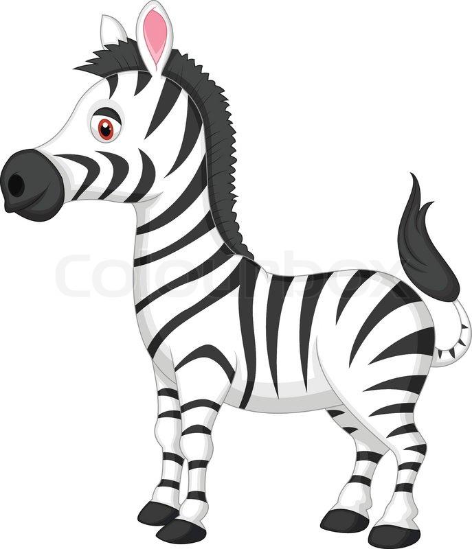 687x800 Baby Zebra Cartoon Vector Illustration Of Cute Zebra Cartoon