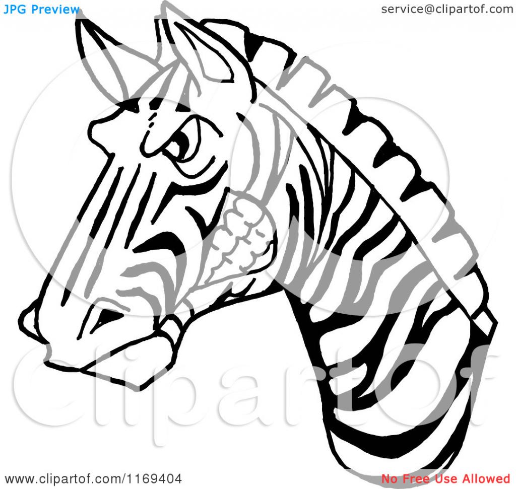 1024x971 Cartoon Drawing Zebra Cartoon Of A Black And White Aggressive