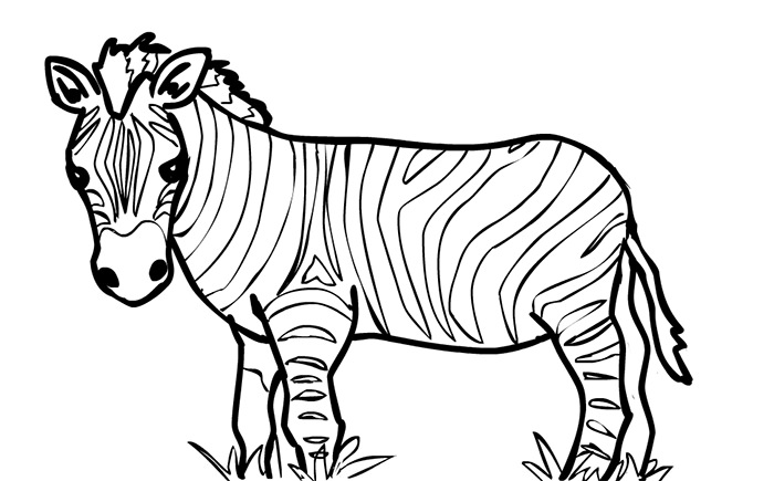 700x435 40+ Zebra Templates