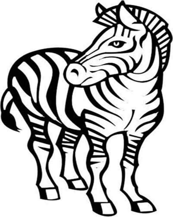 600x752 Zebra, Awesome Zebra Drawing Coloring Page coloring 5 Pinterest