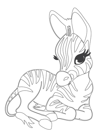 360x480 Cute Baby Zebra coloring page Free Printable Coloring Pages