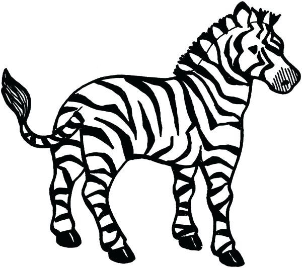 600x533 Zebra Coloring Book Coloring Page Free Printable Zebra Coloring