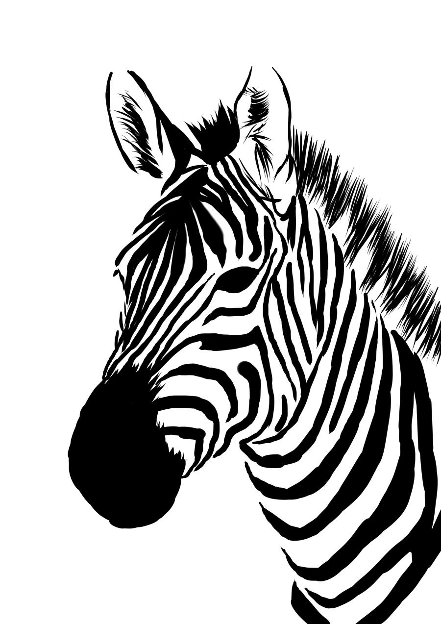 900x1273 Zebra Head Clipart Letters Example